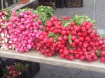 Radish Porn - Union Square