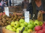 Apples- Greenmarket
