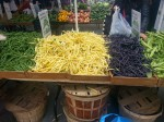 Green Beans of Many Colors - Union Square Market